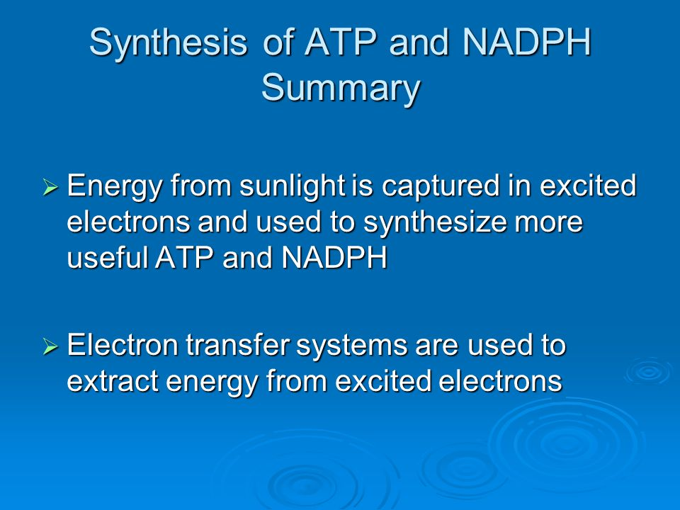 Synthesis of ATP and NADPH Summary  Energy from sunlight is captured in excited electrons and used to synthesize more useful ATP and NADPH  Electron