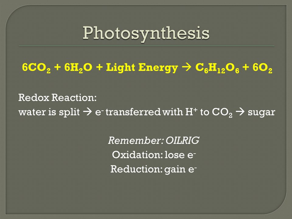 6CO 2 + 6H 2 O + Light Energy  C 6 H 12 O 6 + 6O 2 Redox Reaction: water is split  e - transferred with H + to CO 2  sugar Remember: OILRIG Oxidati