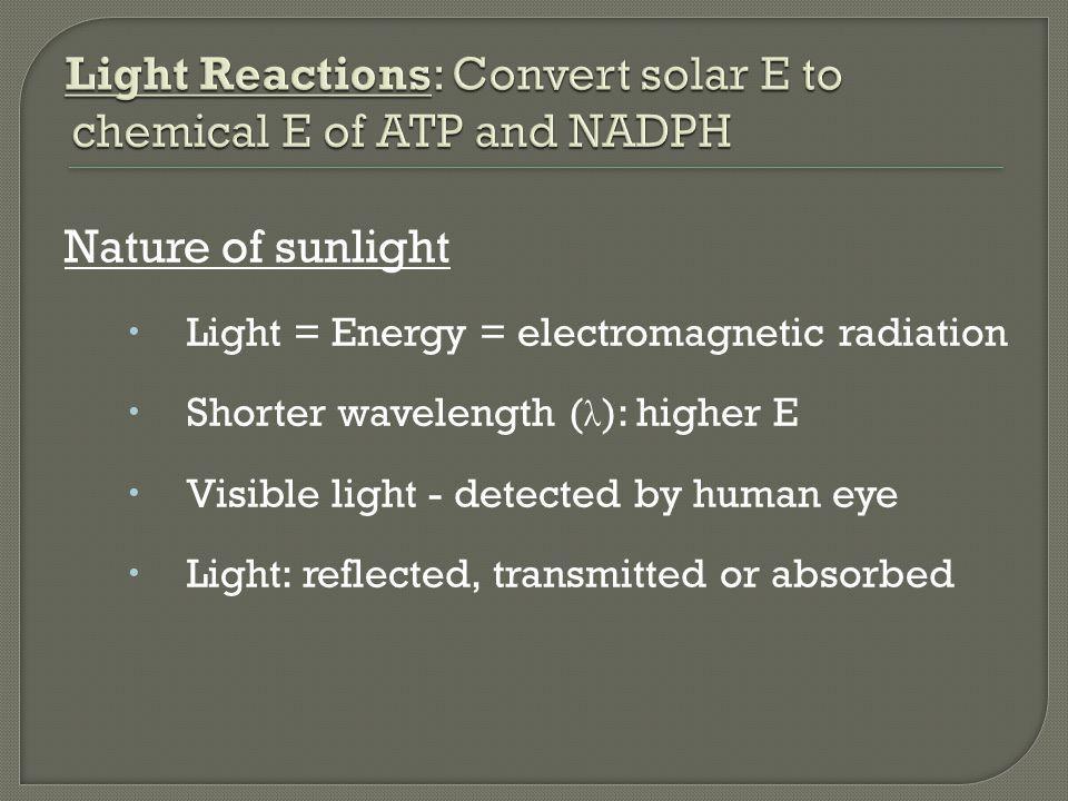 Nature of sunlight  Light = Energy = electromagnetic radiation  Shorter wavelength ( λ ): higher E  Visible light - detected by human eye  Light: