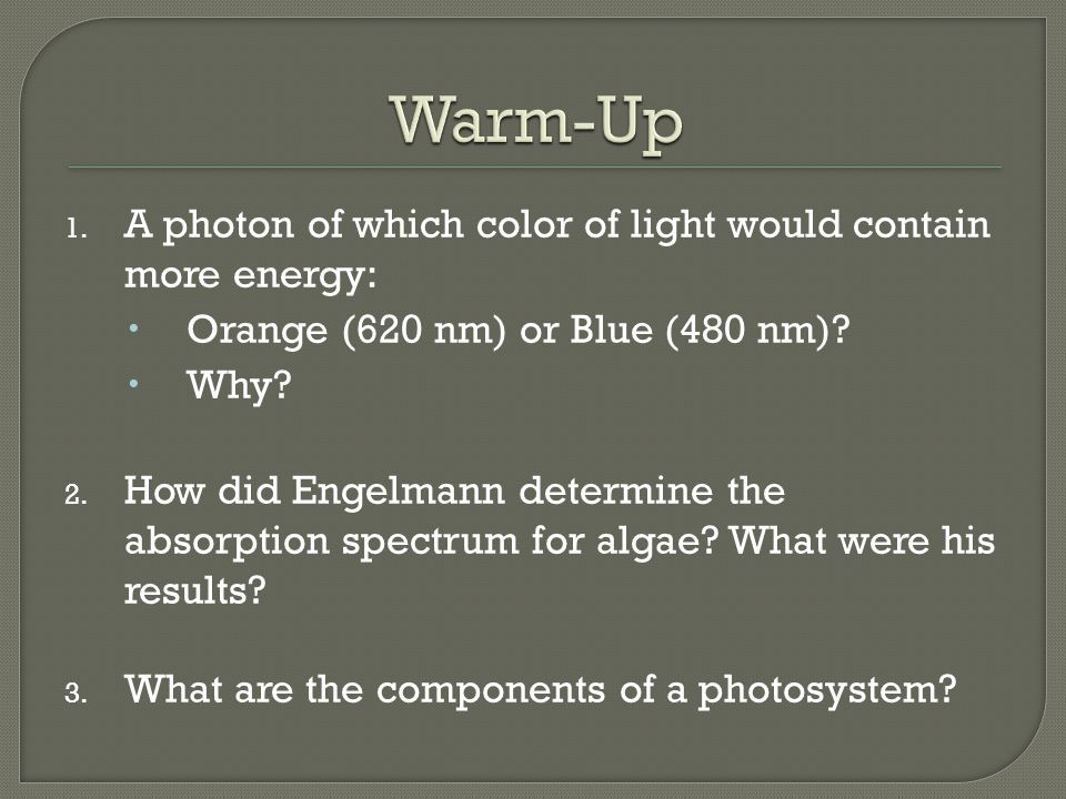 1. A photon of which color of light would contain more energy:  Orange (620 nm) or Blue (480 nm)?  Why? 2. How did Engelmann determine the absorptio