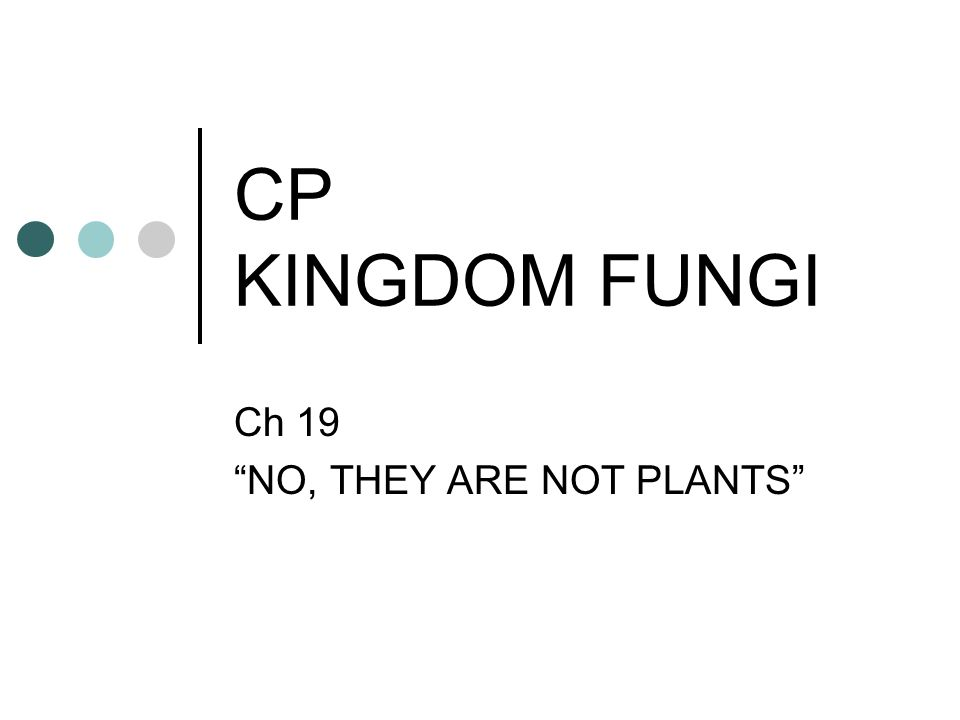 CP KINGDOM FUNGI Ch 19 NO, THEY ARE NOT PLANTS