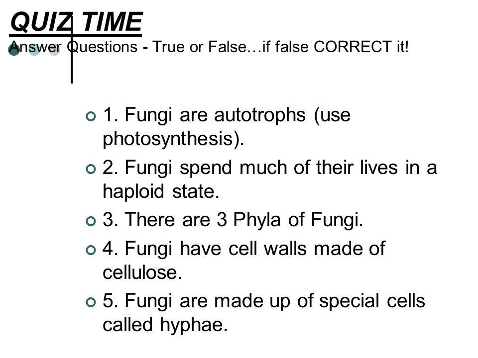 QUIZ TIME Answer Questions - True or False…if false CORRECT it.