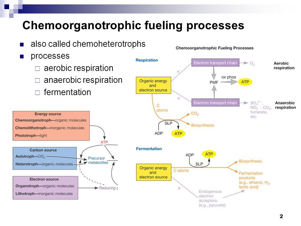 2 Chemoorganotrophic fueling processes also called chemoheterotrophs processes  aerobic respiration  anaerobic respiration  fermentation