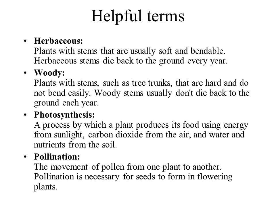 Helpful terms Herbaceous: Plants with stems that are usually soft and bendable. Herbaceous stems die back to the ground every year. Woody: Plants with