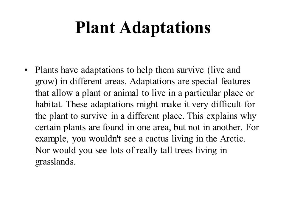 Plant Adaptations Plants have adaptations to help them survive (live and grow) in different areas. Adaptations are special features that allow a plant