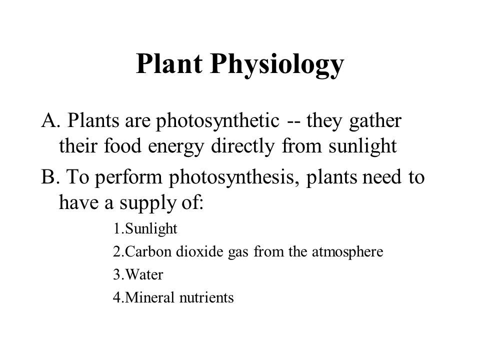 Bryophytes The bryophytes include the mosses, liverworts, and hornworts.