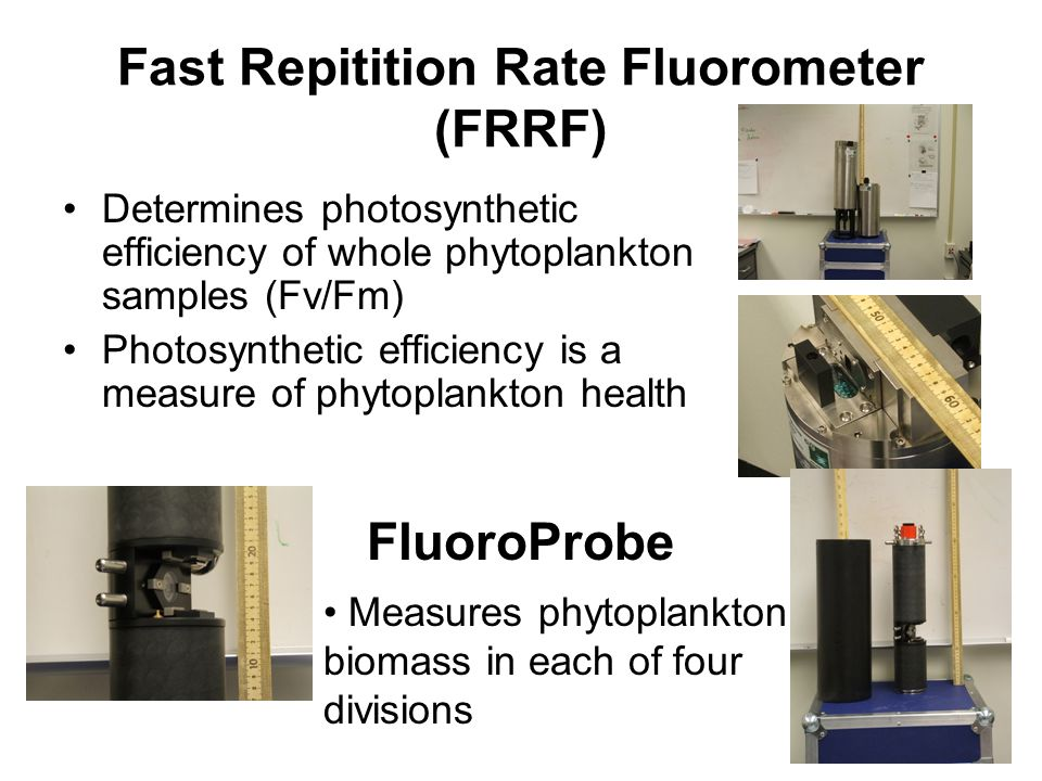 Fast Repitition Rate Fluorometer (FRRF) Determines photosynthetic efficiency of whole phytoplankton samples (Fv/Fm) Photosynthetic efficiency is a measure of phytoplankton health FluoroProbe Measures phytoplankton biomass in each of four divisions