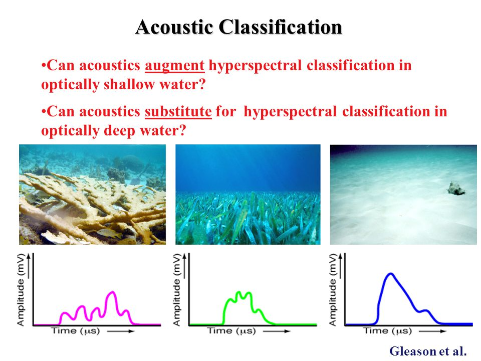 Can acoustics augment hyperspectral classification in optically shallow water? Can acoustics substitute for hyperspectral classification in optically