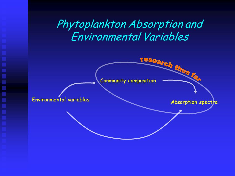 Phytoplankton Absorption and Environmental Variables Community composition Environmental variables Absorption spectra
