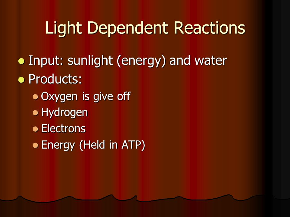 Light Dependent Reactions Input: sunlight (energy) and water Input: sunlight (energy) and water Products: Products: Oxygen is give off Oxygen is give off Hydrogen Hydrogen Electrons Electrons Energy (Held in ATP) Energy (Held in ATP)