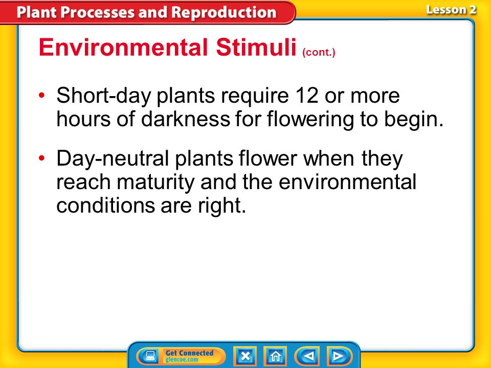 Lesson 2-2 Photoperiodism is a plant's response to the number of hours of darkness in its environment.Photoperiodism Plants that flower when exposed t