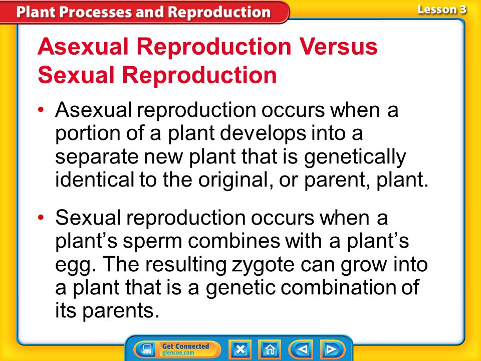 Lesson 3 Reading Guide - Vocab alternation of generationsalternation of generations spore pollen grain pollination ovule Plant Reproduction embryo see