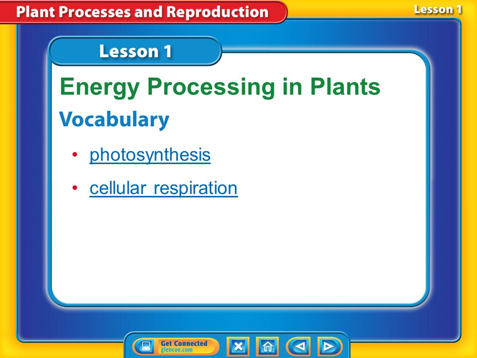 Lesson 1-3 Cellular respiration is a series of chemical reactions that convert the energy in food molecules into a usable form of energy called ATP.Cellular respiration Glucose molecules break down during cellular respiration.
