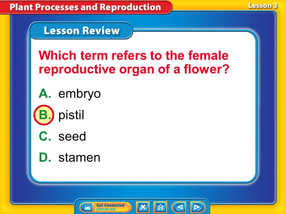 Lesson 3 – LR1 A.cell division B.meiosis C.pollination D.sexual reproduction In order for this to occur, pollen grains must land on a female reproduct