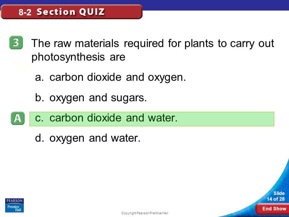 End Show Slide 14 of 28 Copyright Pearson Prentice Hall 8-2 The raw materials required for plants to carry out photosynthesis are a.carbon dioxide and