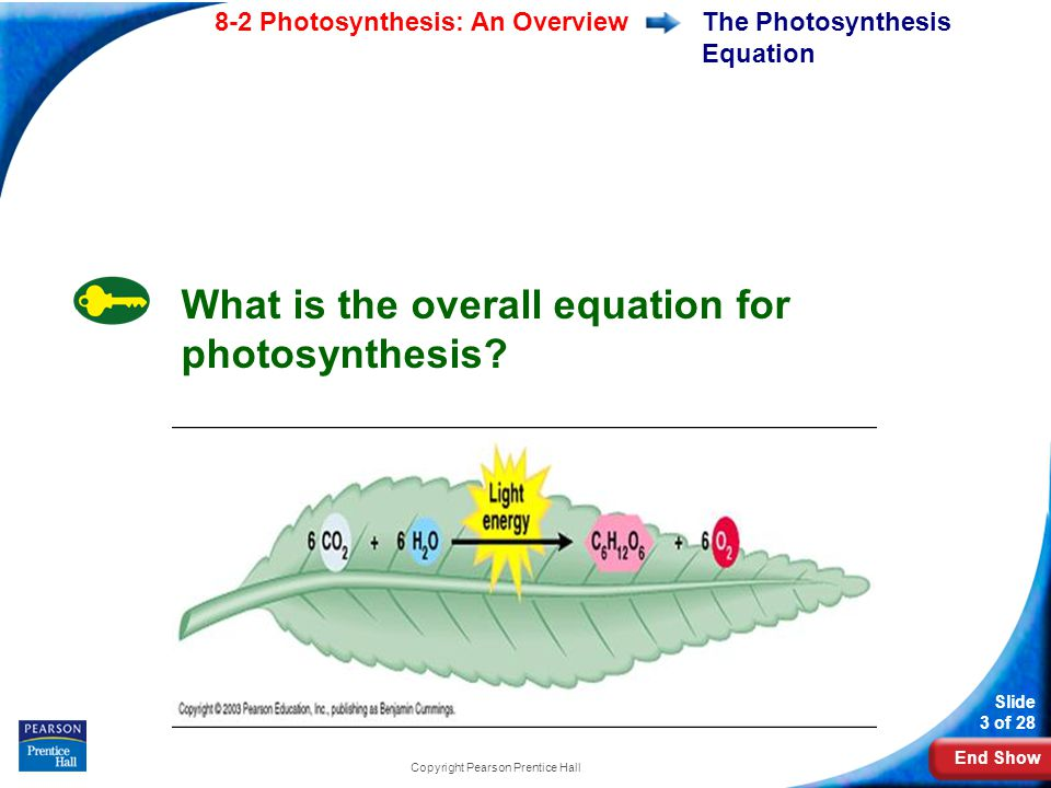 End Show Slide 3 of 28 8-2 Photosynthesis: An Overview Copyright Pearson Prentice Hall The Photosynthesis Equation What is the overall equation for ph