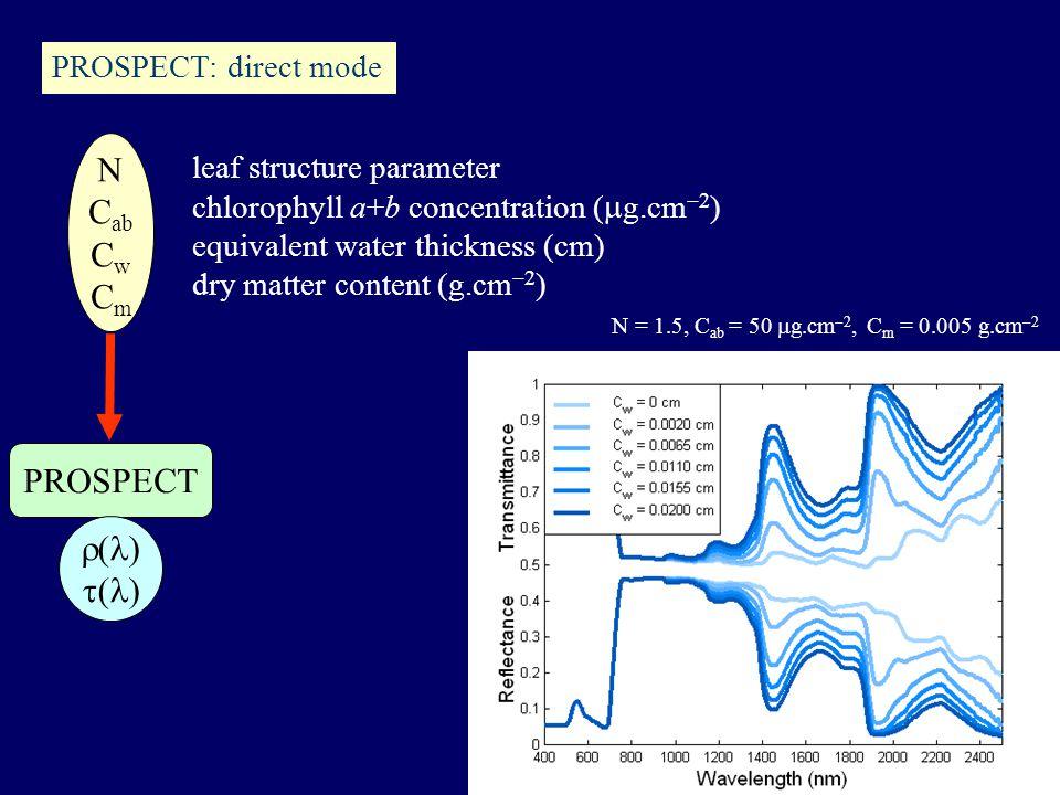 N C ab C w C m PROSPECT  ( )  ( ) leaf structure parameter chlorophyll a+b concentration (  g.cm  2 ) equivalent water thickness (cm) dry matter content (g.cm  2 ) N = 1.5, C ab = 50  g.cm  2, C m = 0.005 g.cm  2 PROSPECT: direct mode