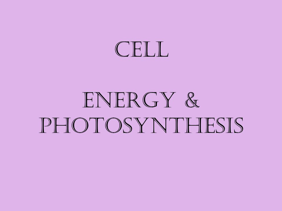 Cell Energy & Photosynthesis