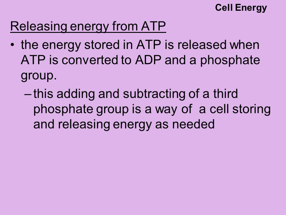 Releasing energy from ATP the energy stored in ATP is released when ATP is converted to ADP and a phosphate group. –this adding and subtracting of a t