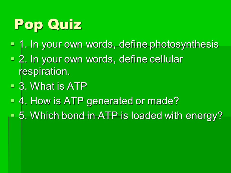 Pop Quiz  1. In your own words, define photosynthesis  2. In your own words, define cellular respiration.  3. What is ATP  4. How is ATP generated
