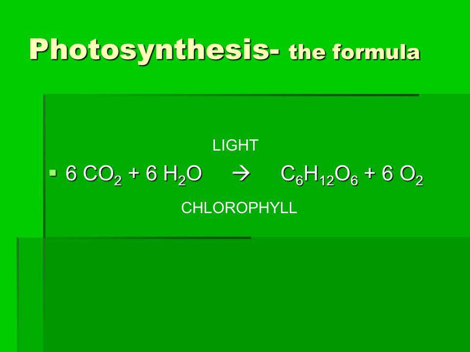 Photosynthesis- the formula  6 CO 2 + 6 H 2 O  C 6 H 12 O 6 + 6 O 2 LIGHT CHLOROPHYLL