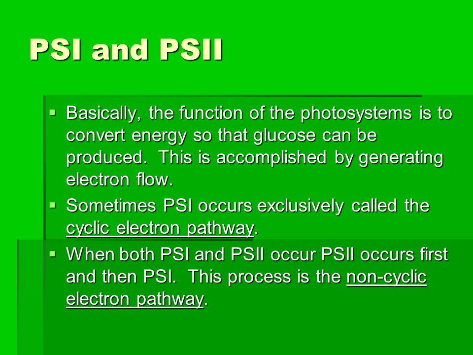 PSI and PSII  Basically, the function of the photosystems is to convert energy so that glucose can be produced. This is accomplished by generating el