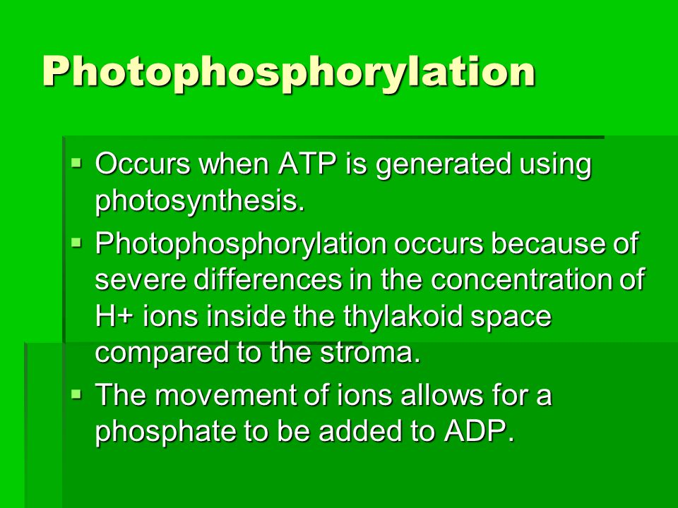 Photophosphorylation  Occurs when ATP is generated using photosynthesis.  Photophosphorylation occurs because of severe differences in the concentra
