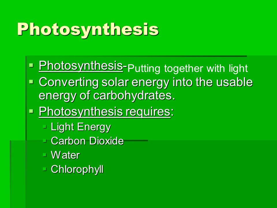 Pigment molecules Light P680 e–e– Primary acceptor 2 1 e–e– e–e– 2 H + O2O2 + 3 H2OH2O 1/21/2 4 Pq Pc Cytochrome complex Electron transport chain 5 ATP Photosystem I (PS I) Light Primary acceptor e–e– P700 6 Fd Electron transport chain NADP + reductase NADP + + H + NADPH 8 7 e–e– e–e– 6 Fig.