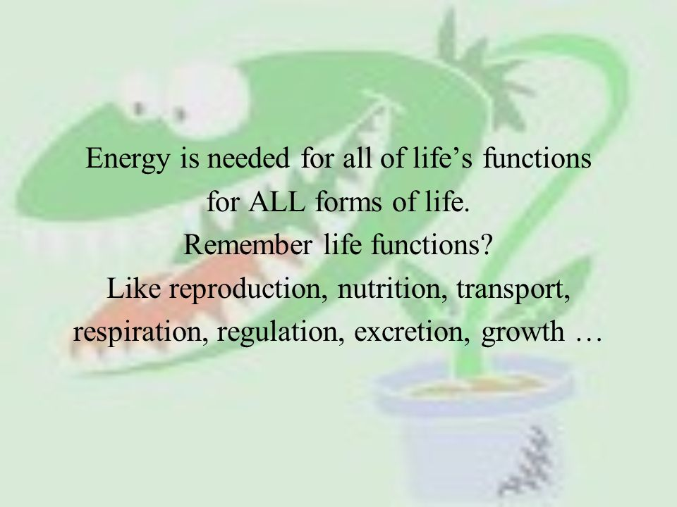 Energy is needed for all of life's functions for ALL forms of life.