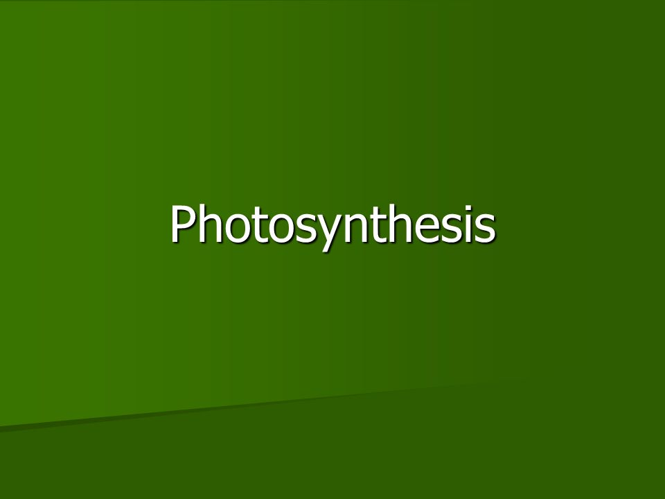 Overview Photosynthesis is the process that converts solar energy (sunlight) into chemical energy (glucose) Photosynthesis is the process that converts solar energy (sunlight) into chemical energy (glucose) –Directly or indirectly, photosynthesis nourishes almost the entire living world