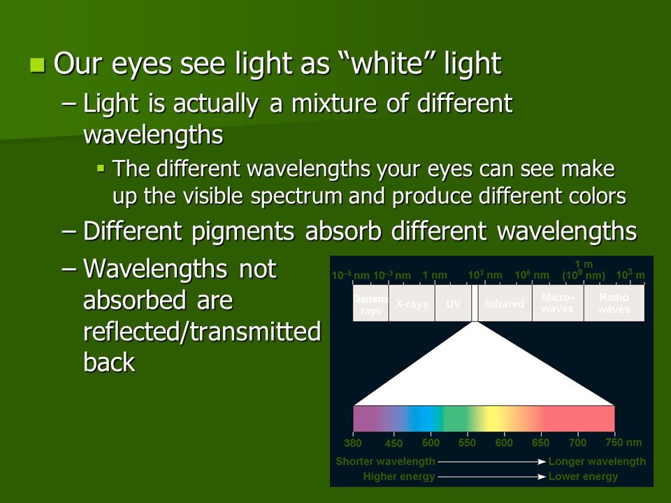 "Our eyes see light as ""white"" light Our eyes see light as ""white"" light –Light is actually a mixture of different wavelengths  The different waveleng"