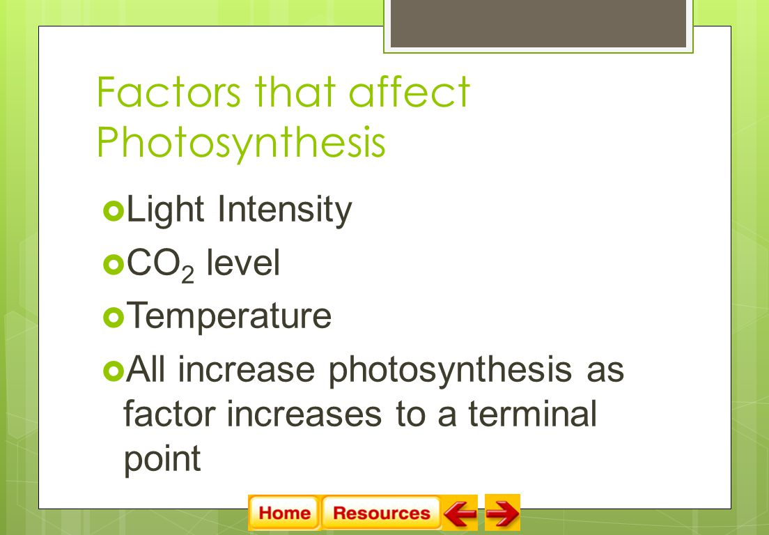Factors that affect Photosynthesis  Light Intensity  CO 2 level  Temperature  All increase photosynthesis as factor increases to a terminal point
