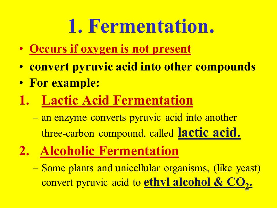 1. Fermentation. Occurs if oxygen is not present convert pyruvic acid into other compounds For example: 1.Lactic Acid Fermentation –an enzyme converts