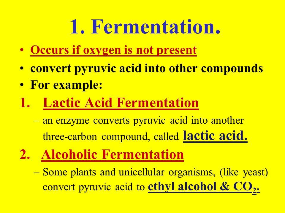 2.Aerobic Respiration occurs in the mitochondria.