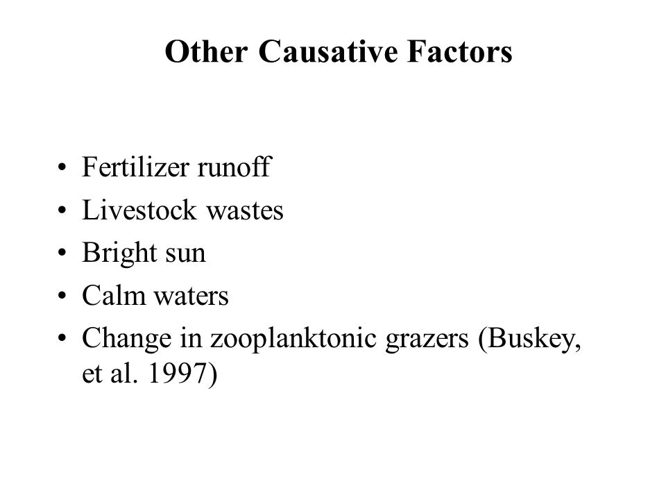 Other Causative Factors Fertilizer runoff Livestock wastes Bright sun Calm waters Change in zooplanktonic grazers (Buskey, et al. 1997)