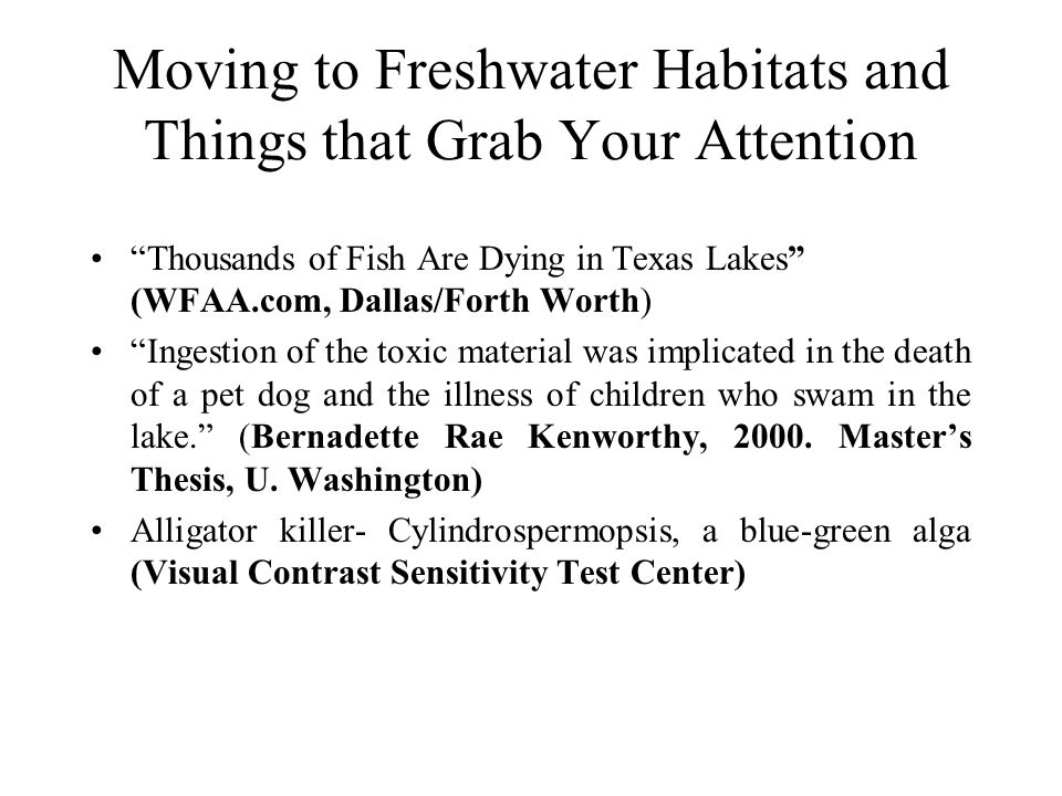 "Moving to Freshwater Habitats and Things that Grab Your Attention ""Thousands of Fish Are Dying in Texas Lakes"" (WFAA.com, Dallas/Forth Worth) ""Ingesti"