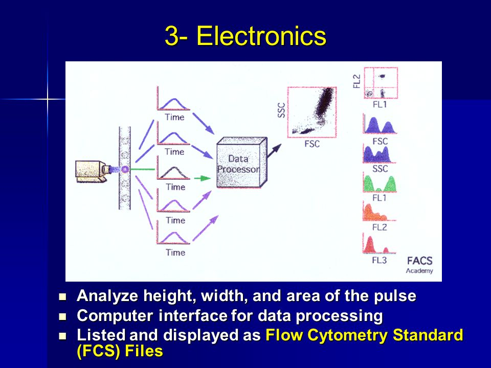 Analyze height, width, and area of the pulse Analyze height, width, and area of the pulse Computer interface for data processing Computer interface for data processing Listed and displayed as Flow Cytometry Standard (FCS) Files Listed and displayed as Flow Cytometry Standard (FCS) Files 3- Electronics