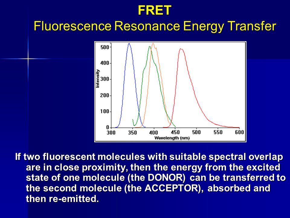 FRET Fluorescence Resonance Energy Transfer If two fluorescent molecules with suitable spectral overlap are in close proximity, then the energy from t