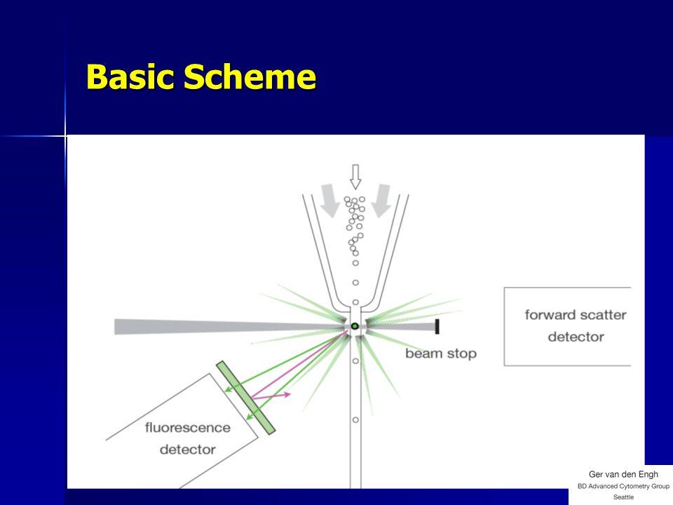 Basic Scheme