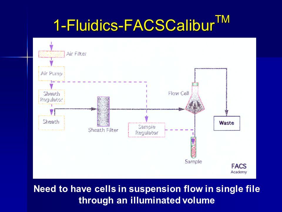 1-Fluidics-FACSCalibur TM Need to have cells in suspension flow in single file through an illuminated volume