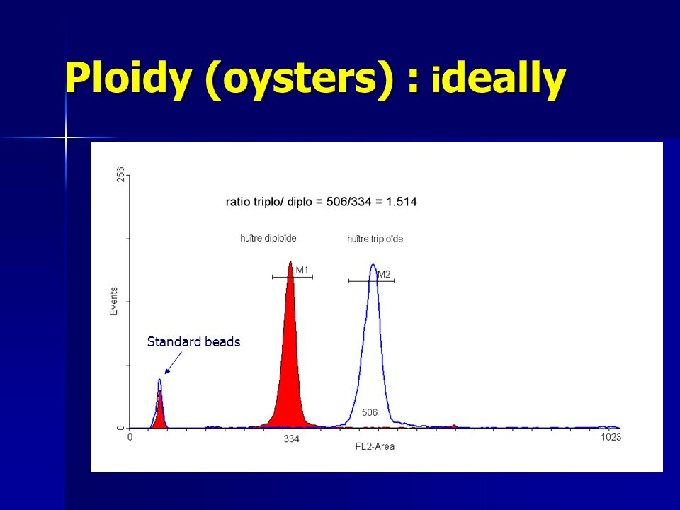 Ploidy (oysters) : i deally Standard beads