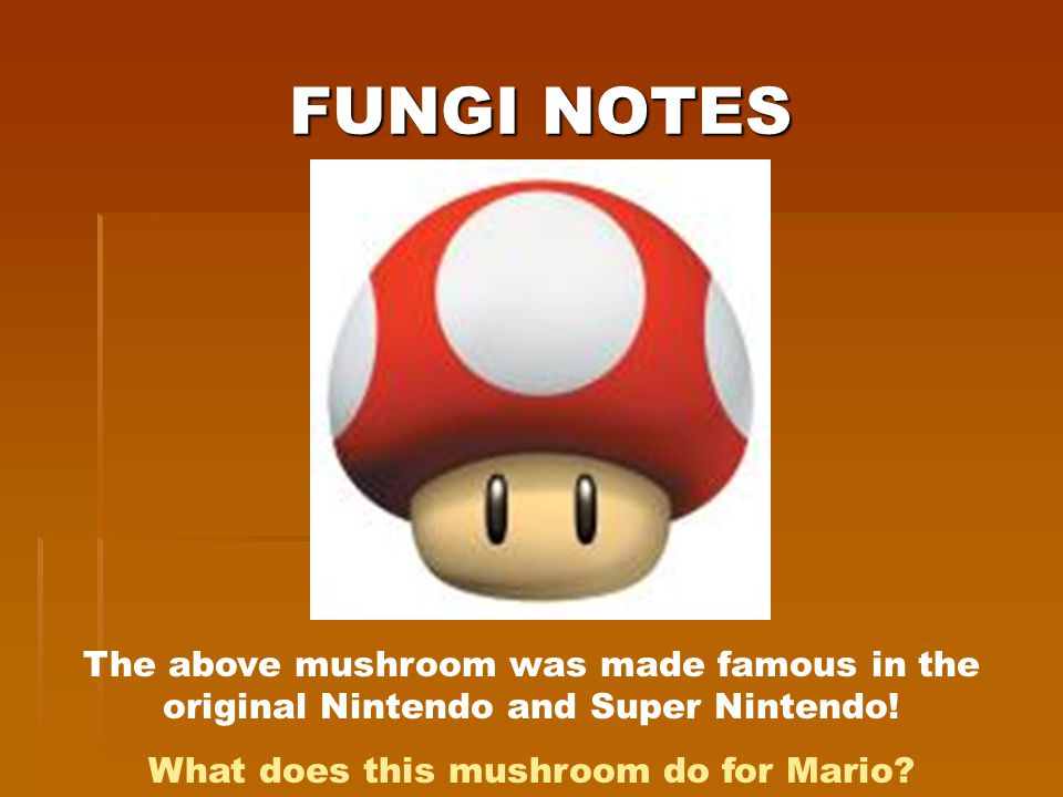FUNGI NOTES The above mushroom was made famous in the original Nintendo and Super Nintendo! What does this mushroom do for Mario?