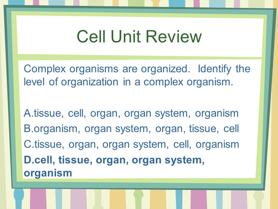 Cell Unit Review Complex organisms are organized.