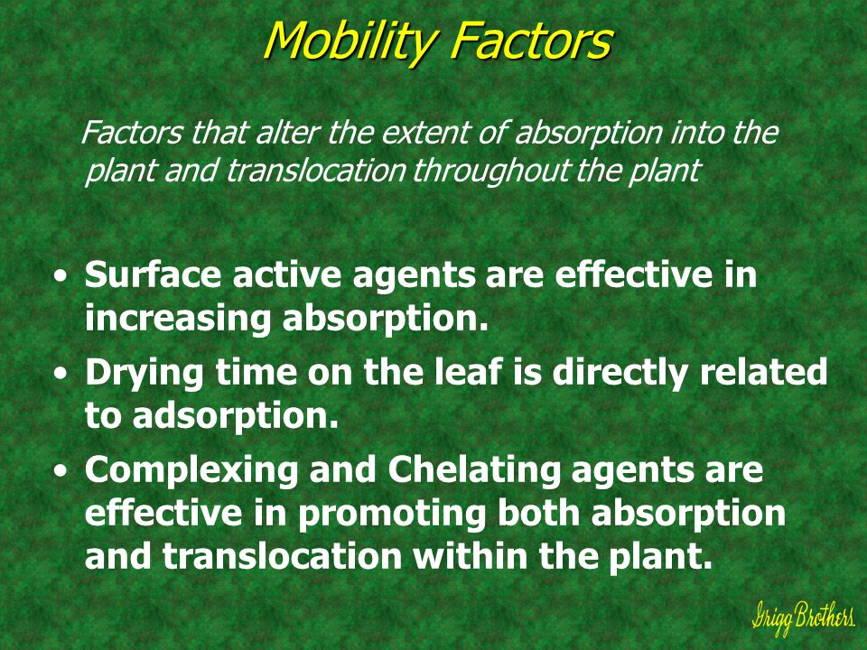 Mobility Factors Factors that alter the extent of absorption into the plant and translocation throughout the plant Surface active agents are effective