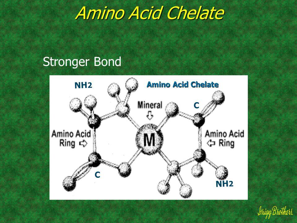 Amino Acid Chelate Stronger Bond Amino Acid Chelate NH 2 C C