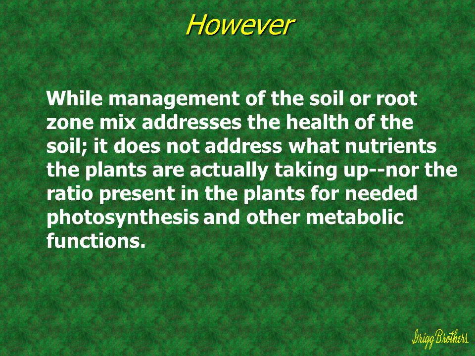 However While management of the soil or root zone mix addresses the health of the soil; it does not address what nutrients the plants are actually tak