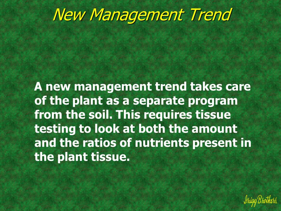 New Management Trend A new management trend takes care of the plant as a separate program from the soil. This requires tissue testing to look at both