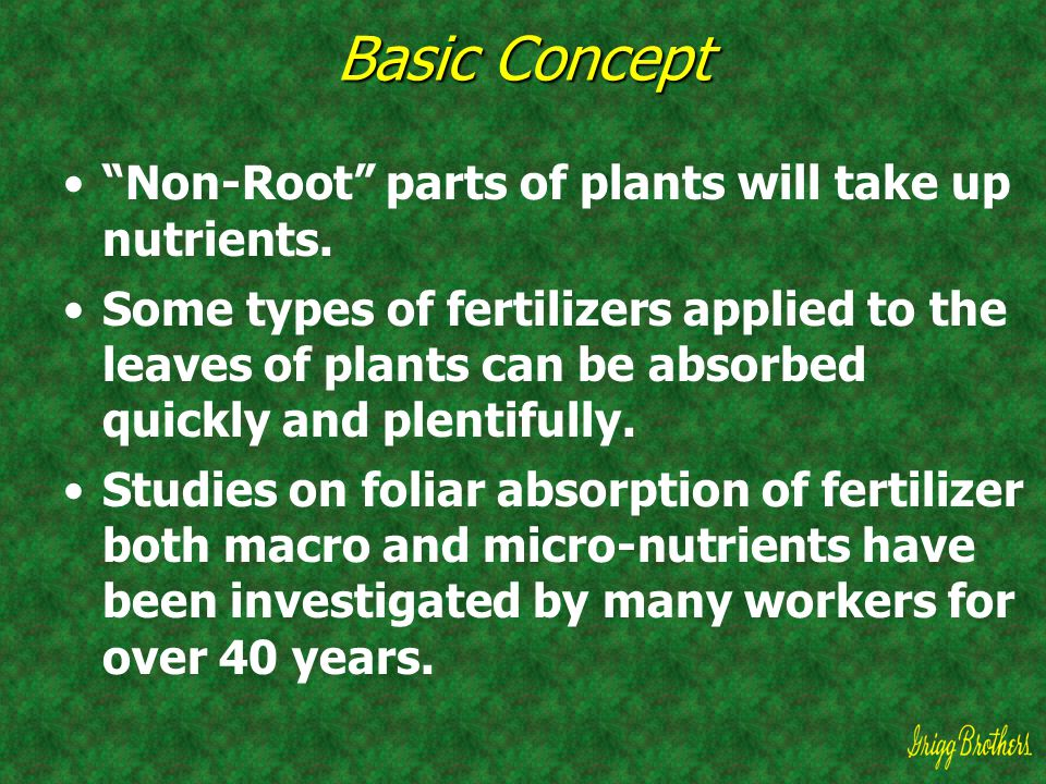 """Basic Concept """"Non-Root"""" parts of plants will take up nutrients. Some types of fertilizers applied to the leaves of plants can be absorbed quickly and"""