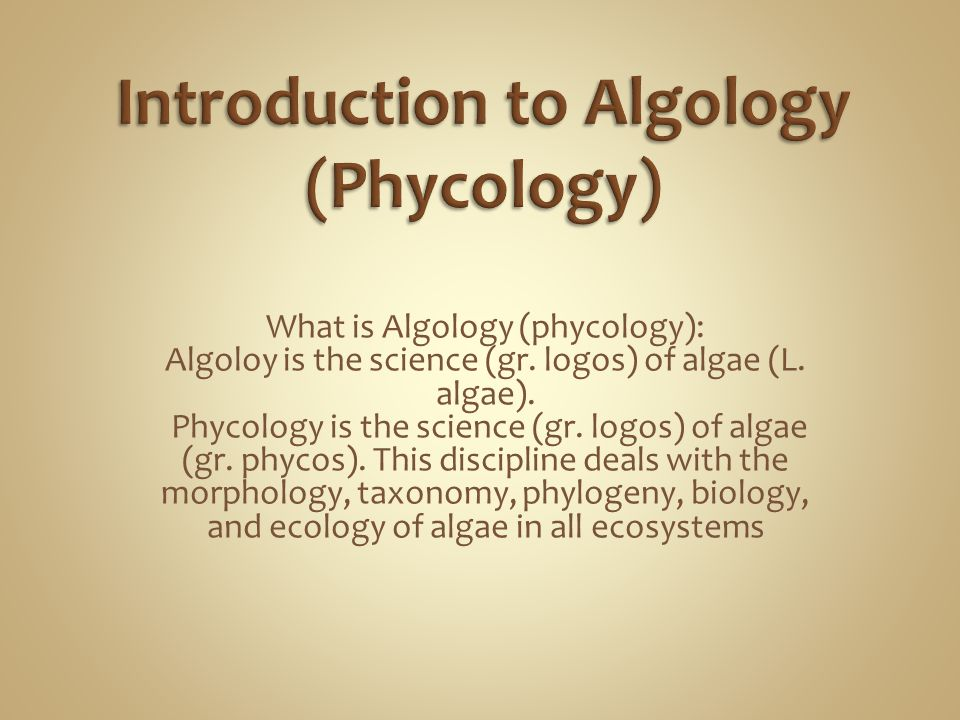 Small algae live on top of larger algae: epiphyton Algae in free water: phytoplankton