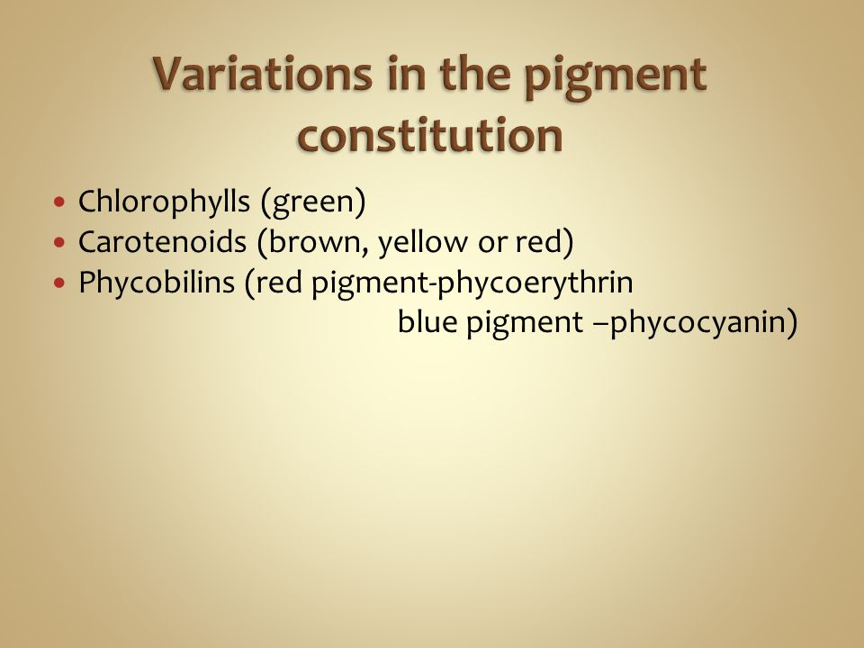 Chlorophylls (green) Carotenoids (brown, yellow or red) Phycobilins (red pigment-phycoerythrin blue pigment –phycocyanin)